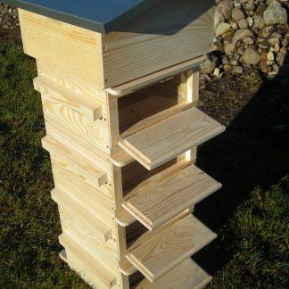 Observation Warre hive